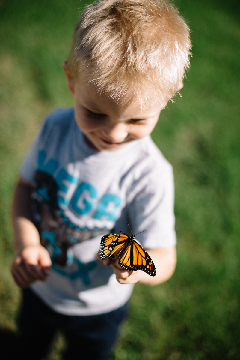 holden_butterfly_092115_lowres_LEE-7719